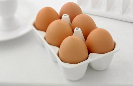 Eggs help with memory